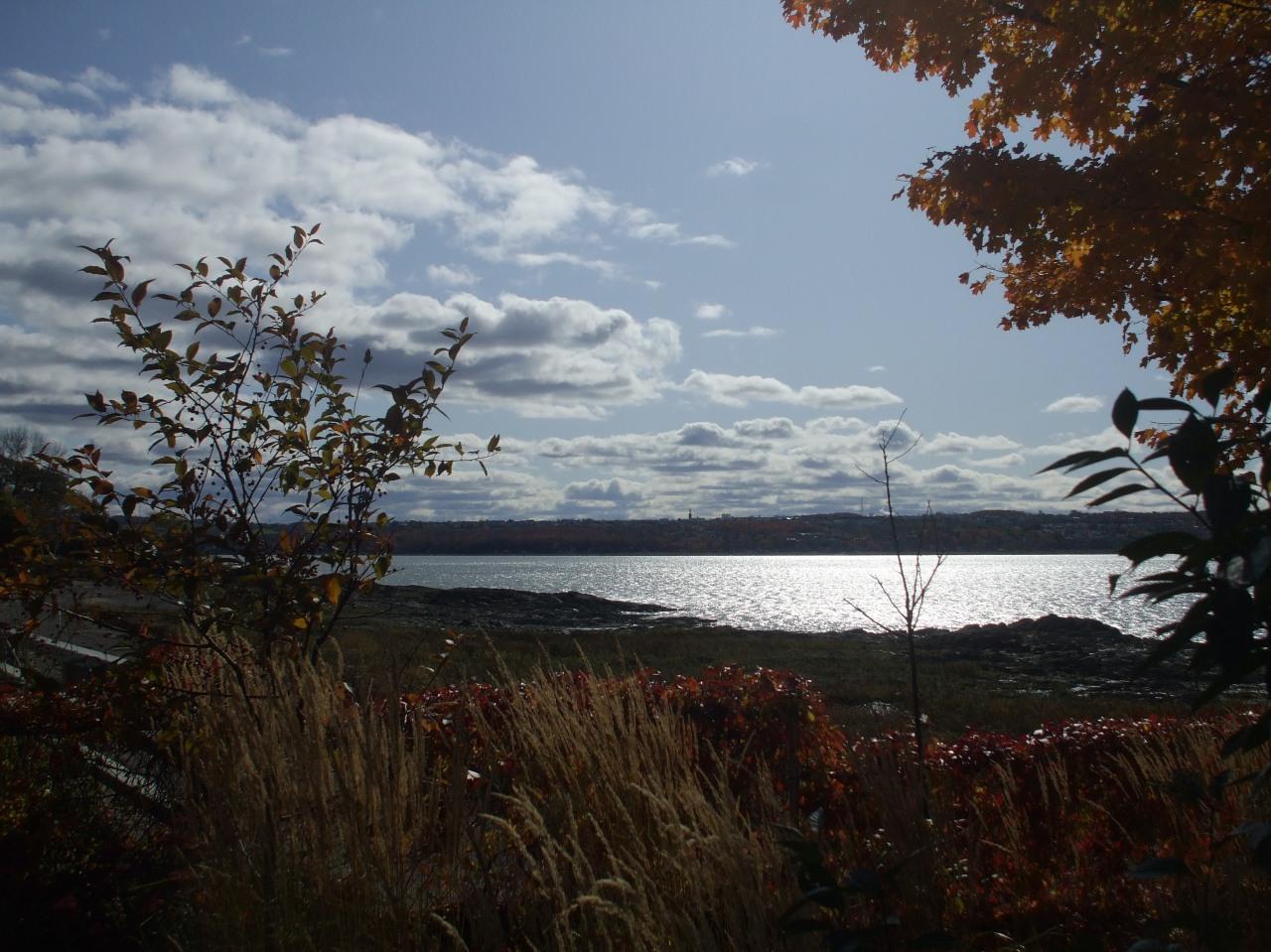 City Scenes: Quebec andMontreal