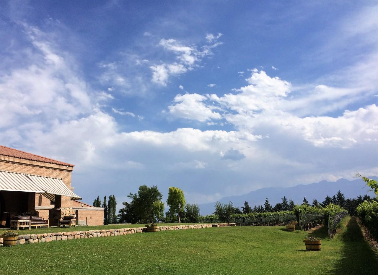 Bodega Andeluna, Mendoza