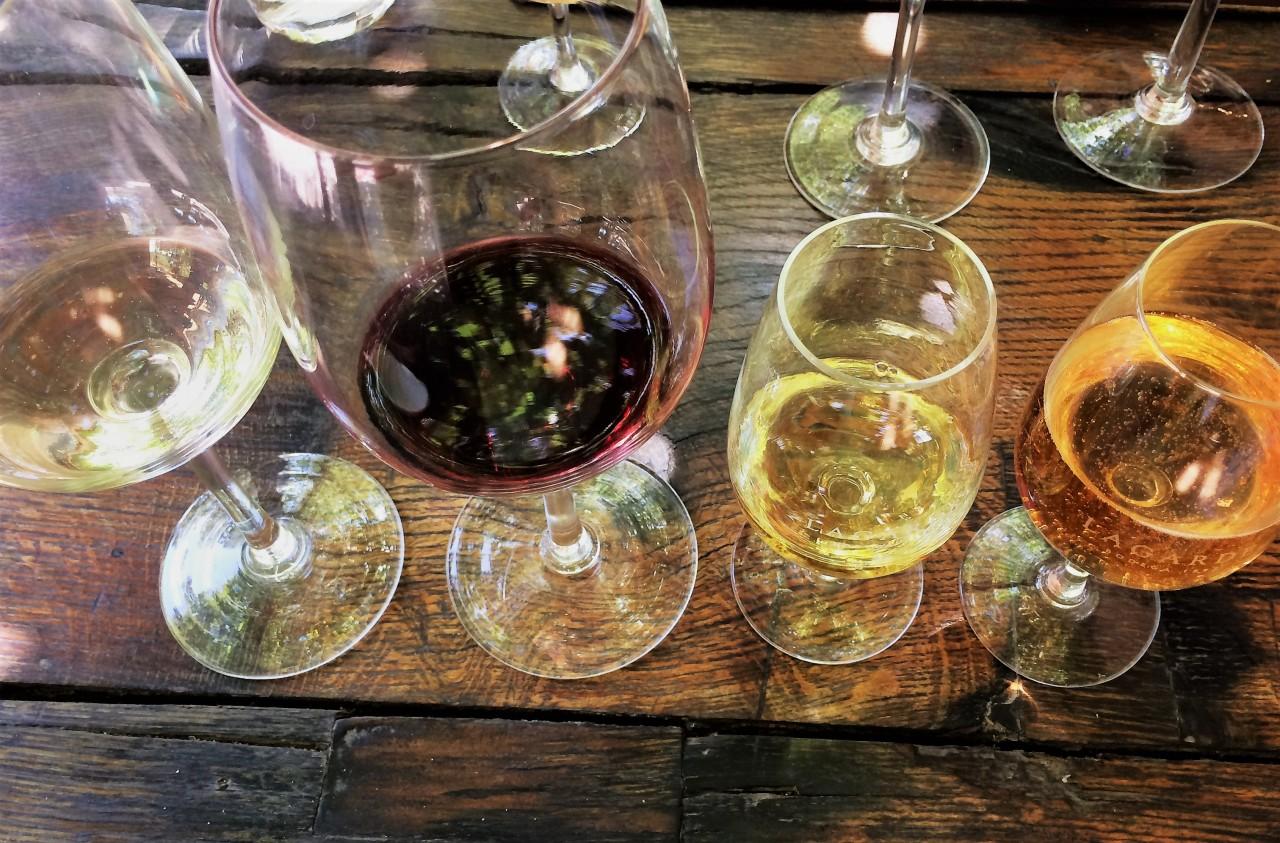 Lagarde Vineyards, Mendoza