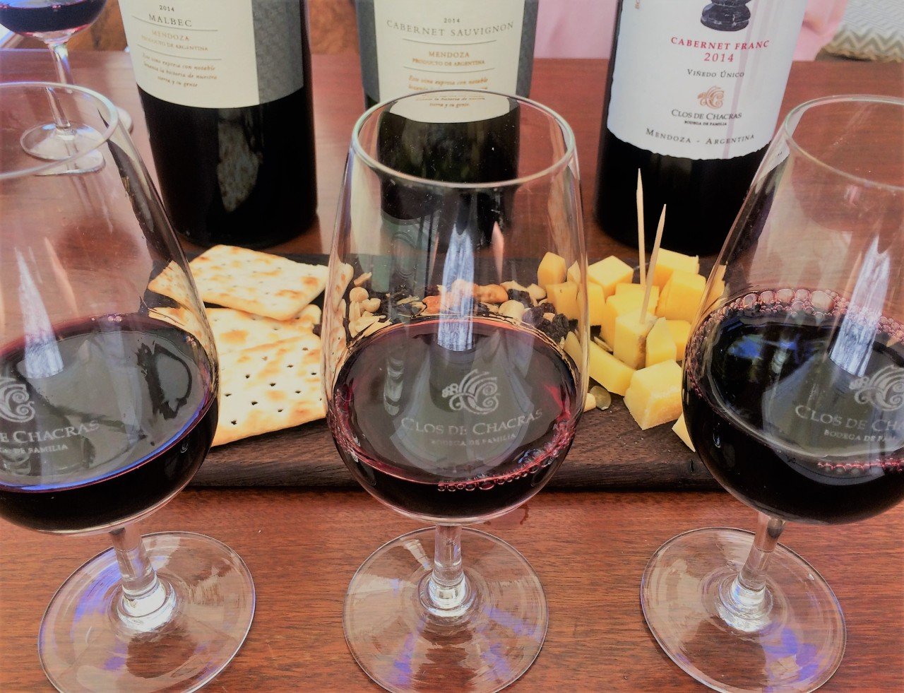 Mendoza Wine Tours: Clos de Chacras Vineyard